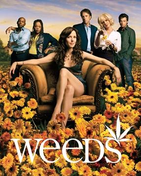 Weeds - Season 2 -  Key Art