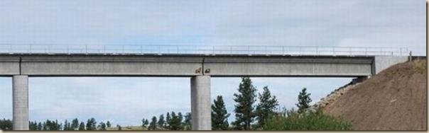 Chèvres sur un pont-3