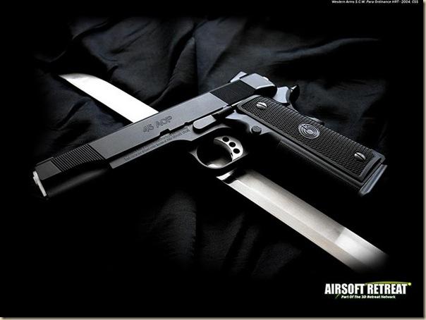 Armes (30)