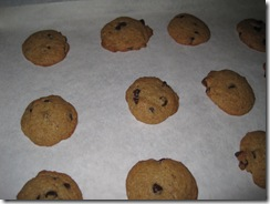healthy choc chip cookies