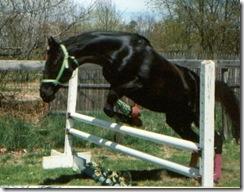 free jump Axe