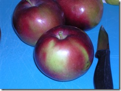 flat apple 4