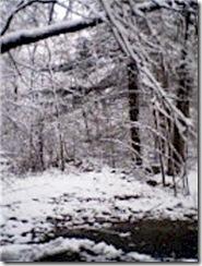 snow1edit
