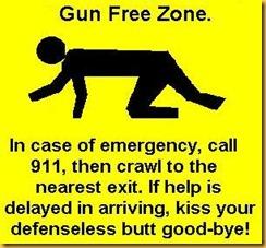 001-1219142405-gun_control