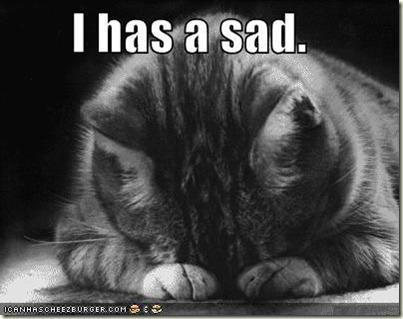 sad-cat2