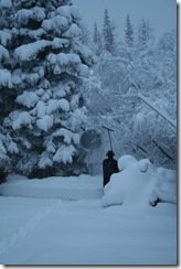 wintersnow 016