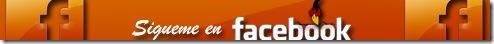 facebook-separador