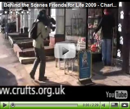 friends for life videos  posted by auntie jane