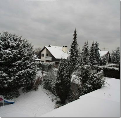 snow 201001_7671 Panorama (1024x1000)