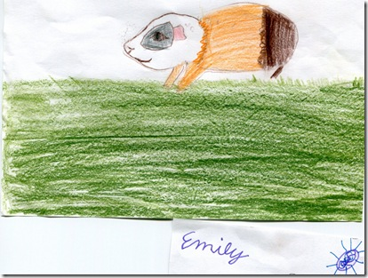 emily guinea pig 20091009 (1024x773)
