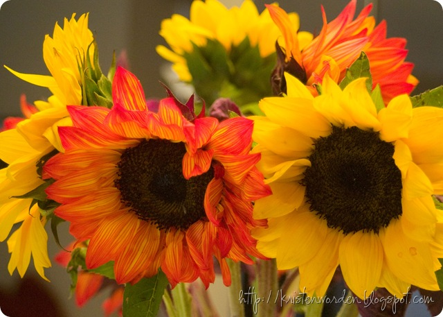 062310flowersfromjudy
