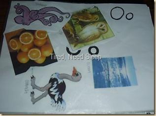 blog pics 087
