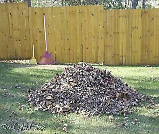 big rake, little rake