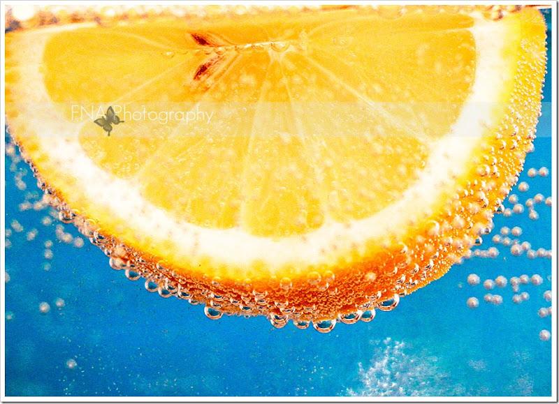 lemon-19