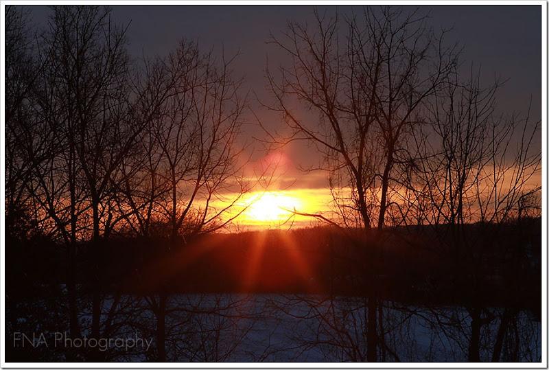 sunflare9