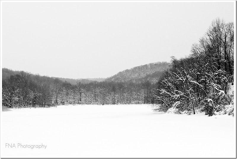 snowlakebw