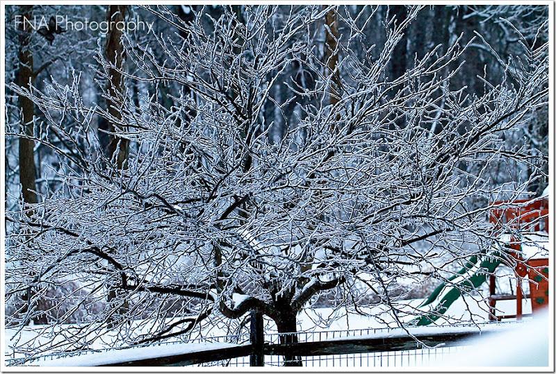 Feb-2-ice-7