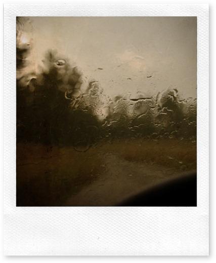 windswhie