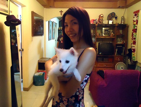 dog person versus cat person