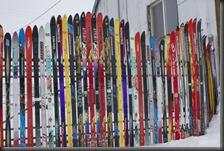 Skis3