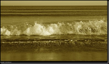l'uomo e il mare-carloalessio77