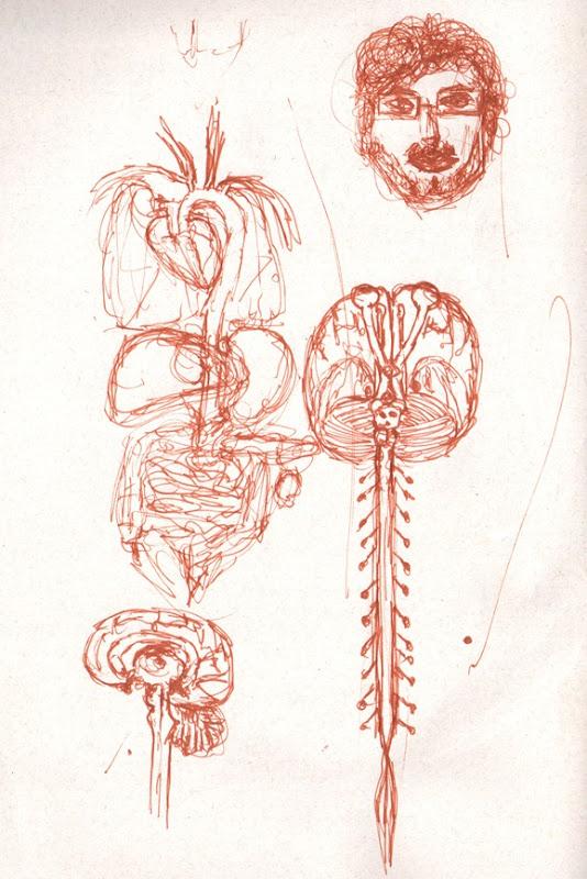 sketch erica - cerebrooo