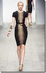 Amanda-Wakeley-Fall-2011-RTW-35