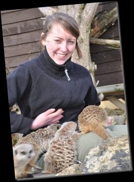 Fern & Meerkats DSC_0415