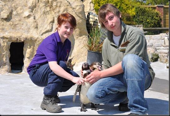 Sarah & Casey with Penguins DSC_0017
