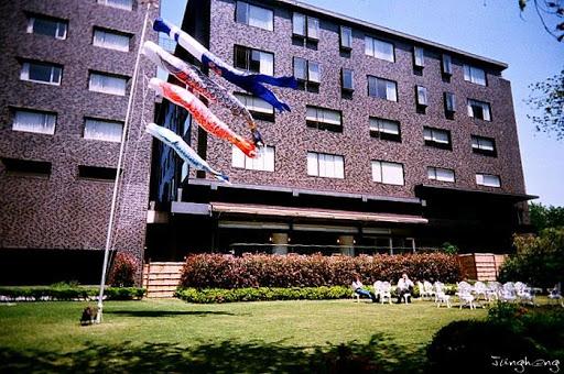 飯店旁的鯉魚旗