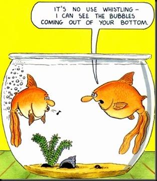 Fish_Fart