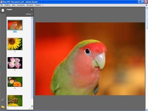 fotografia_pdf