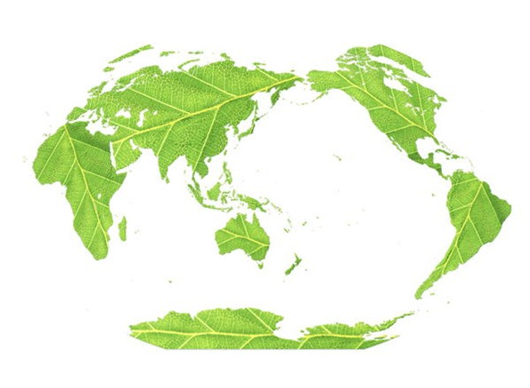 negocios medio ambiente