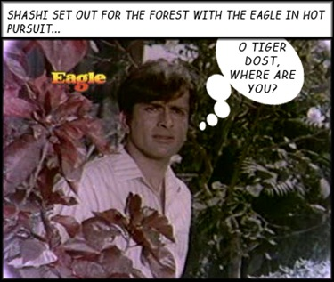 Shashi heads for the forest