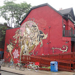 in Toronto, Ontario, Canada