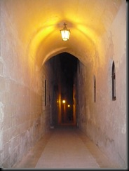 Mdina by night (4)