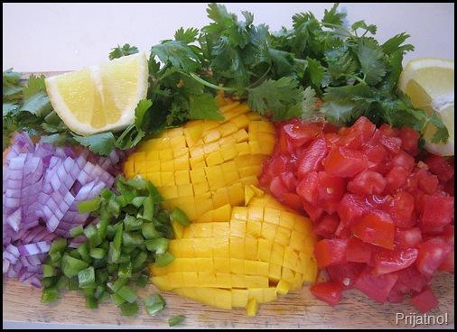 tomato mango salsa 004-crop v1