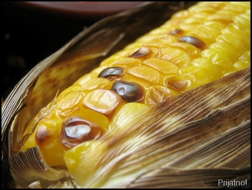 Roasted Corn 009 v1