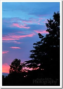 6 - Sunset