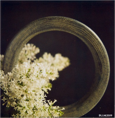 Ring of Lilacs