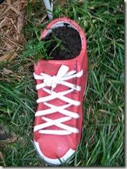 red sneaker II