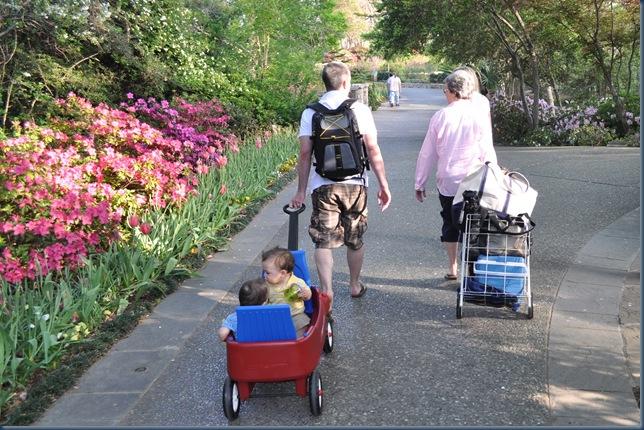 Off to the Arboretum we go
