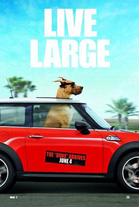 Marmaduke, movie, poster