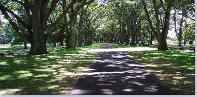 Cornwall Park 0209 001
