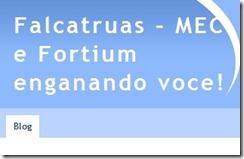 blogfalcatruas