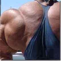 muscul200