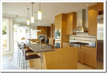 ZEBRA INTERIORS-Brar Residence-Kitchen