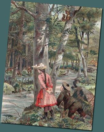 rode Eekh. ingekleurde gravure uit 1880