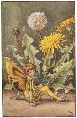 The Dandelion Fairy;