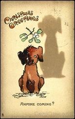 card00503_fr
